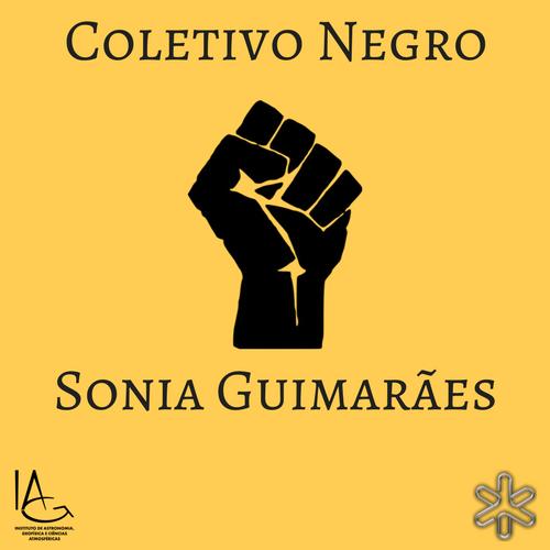 Logo do Coletivo Sônia Guimarães
